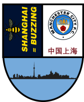 SHANGHAI PIN BADGE IDEA 1