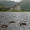 Loch Awe Dalmally (49)